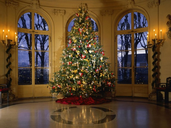 lighted-tree-home-decor-christmas-tree-decorations-on-decor-with-download-christmas-trees